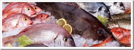 Хранение рыбы после заморозки