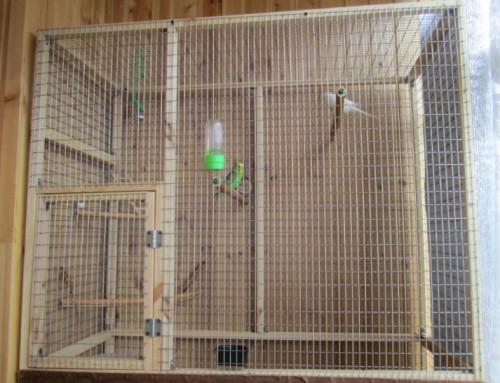 Сделать клетку своими руками для попугая