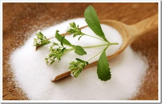 Основные лекарственные свойства стевии